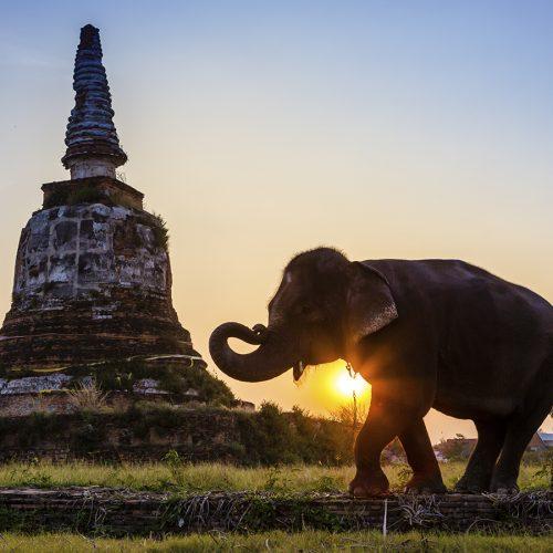 7-reason-thailand