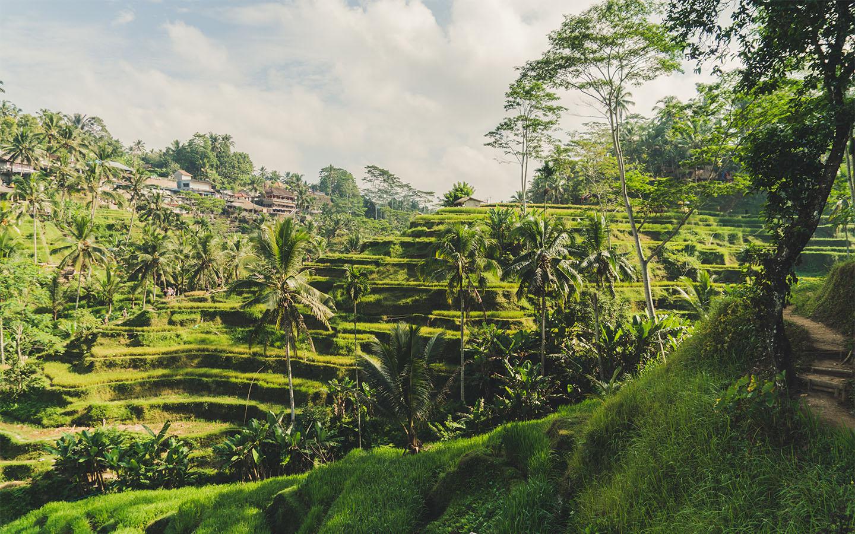 StudentUniverse UK I Bali